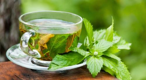 Peppermint Tea, weight loss and benefits